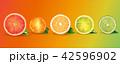 くだもの フルーツ 実のイラスト 42596902