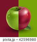 りんご アップル リンゴのイラスト 42596980