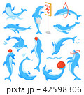 いるか イルカ 海豚のイラスト 42598306