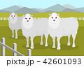 ひつじ ヒツジ 羊のイラスト 42601093