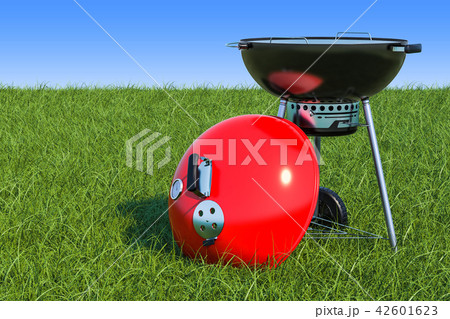 Barbecue grill on the green grass against blue sky 42601623