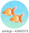 金魚 魚 夏イメージのイラスト 42602573
