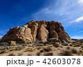 アメリカ・ジョシュア・ツリー国立公園の奇岩群 42603078