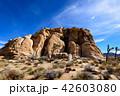アメリカ・ジョシュア・ツリー国立公園の奇岩群 42603080