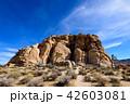 アメリカ・ジョシュア・ツリー国立公園の奇岩群 42603081