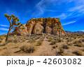 アメリカ・ジョシュア・ツリー国立公園の奇岩群 HDRイメージ 42603082