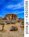 アメリカ・ジョシュア・ツリー国立公園の奇岩群 HDRイメージ 縦構図 42603086