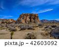 アメリカ・ジョシュア・ツリー国立公園の奇岩群 42603092