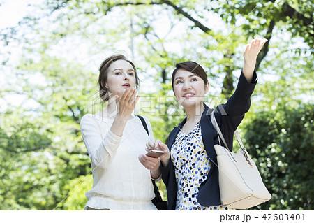 外国人女性と会話する日本人女性 42603401