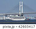 横浜港 豪華客船 客船の写真 42603417