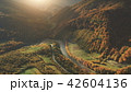 Aerial View of beautiful autumn mountain landscape 42604136