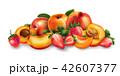 アプリコット アンズ 杏のイラスト 42607377