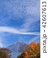 風景 富士山 世界遺産の写真 42607613