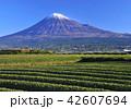 風景 富士山 山の写真 42607694