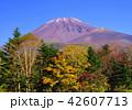 風景 富士山 山の写真 42607713