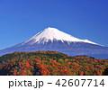風景 富士山 世界遺産の写真 42607714