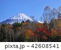 風景 富士山 山の写真 42608541