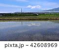風景 富士山 世界遺産の写真 42608969