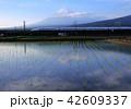 風景 富士山 新幹線の写真 42609337