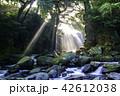 夫婦滝 滝 光芒の写真 42612038