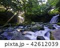 夫婦滝 滝 光芒の写真 42612039