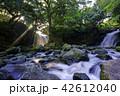 夫婦滝 滝 光芒の写真 42612040