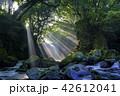 夫婦滝 滝 光芒の写真 42612041