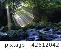夫婦滝 滝 光芒の写真 42612042