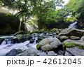 夫婦滝 滝 光芒の写真 42612045
