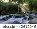 夫婦滝 滝 光芒の写真 42612046