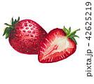 いちご イチゴ 苺のイラスト 42625219