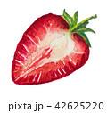 いちご イチゴ 苺のイラスト 42625220