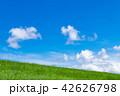 青空 雲 草原の写真 42626798