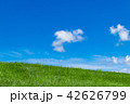 青空 雲 草原の写真 42626799