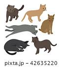 ペット 愛玩動物 ねこのイラスト 42635220