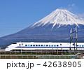 富士山 世界文化遺産 東海道新幹線の写真 42638905
