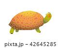 動物 かめ カメのイラスト 42645285