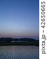 夕暮れの田園風景 42650665