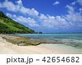 新城海岸 ビーチ 宮古島の写真 42654682