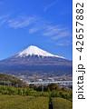 風景 富士山 山の写真 42657882