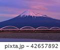 富士川岸からの富士山-6675 42657892