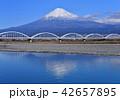 富士川岸からの富士山-6681 42657895
