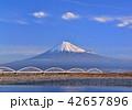 富士川岸からの富士山-6683 42657896