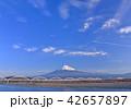 富士川岸からの富士山-6685 42657897