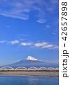 富士川岸からの富士山-6686 42657898
