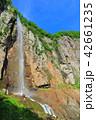 万緑の米子大瀑布(不動滝) 42661235