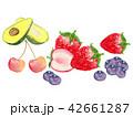 果物 手描き 水彩画 42661287