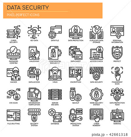 Data Security , Thin Line and Pixel Perfect Icons 42661318