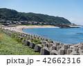 風景 海 海岸の写真 42662316