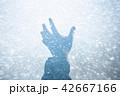 イメージ写真 42667166